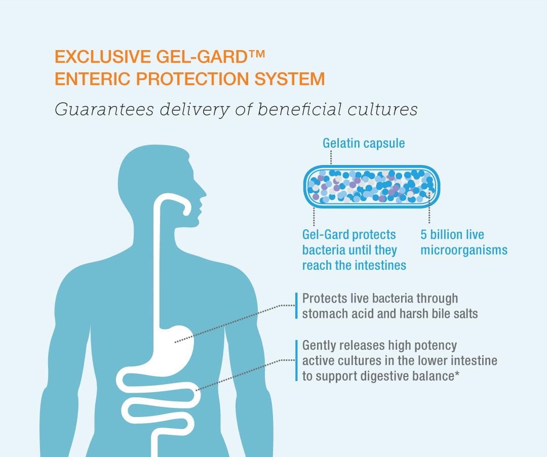 090920_probiotic_graphic