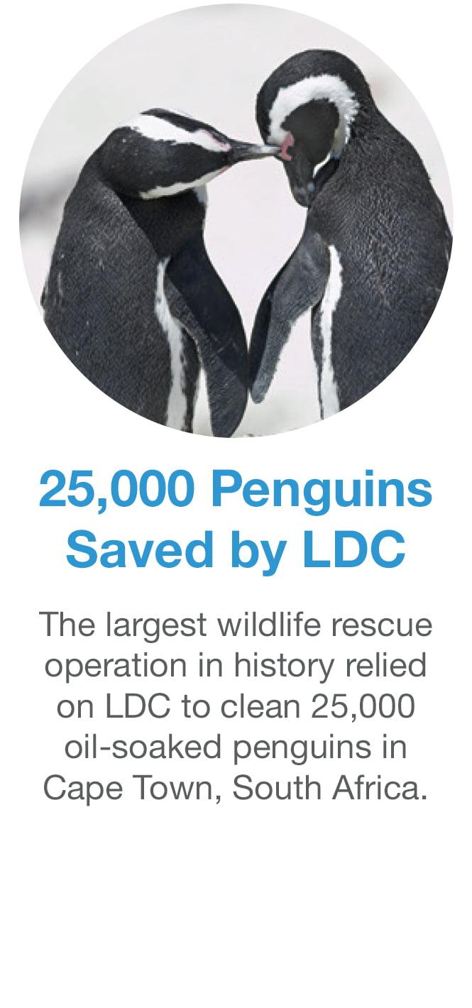 golden_saves_penguins